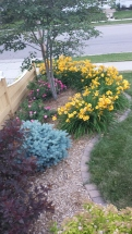 Curb Appeal - Rochester, MN